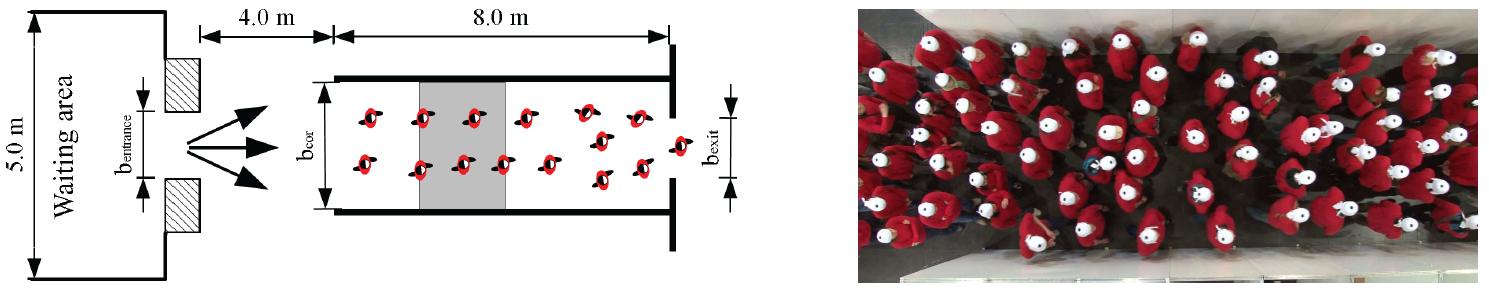 doc scrn vnv unidirectional flow experiment sketch